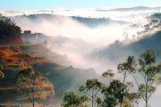 Мадагаскар: видео путешественников