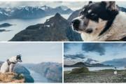 Норвежец бросил работу и путешествует по миру с хаски