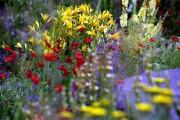 В Киеве откроется выставка цветочных скульптур