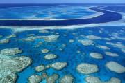 Большой Барьерный риф готов раскрыть свои тайны не только дайверам